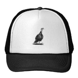 Wild Turkey (line art) Cap