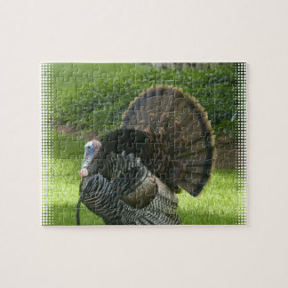 Wild Turkey Puzzle