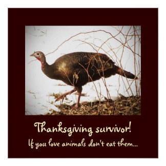 Wild Turkey Vegetarian Poster