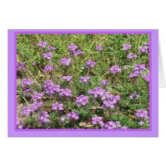 Wild Verbena Floral Notecard