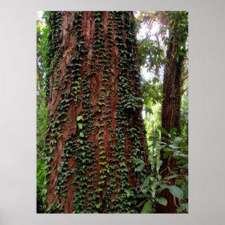 Wild vines on tree print