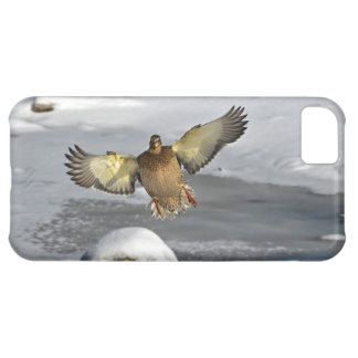 Wild Water Fowl Wildlife Bird-lover Duck design iPhone 5C Case