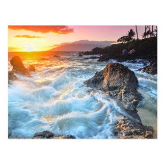 Wild Waves Postcard