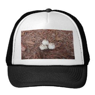 Wild White Mushroom Mesh Hats