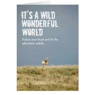 Wild Wonderful World Card