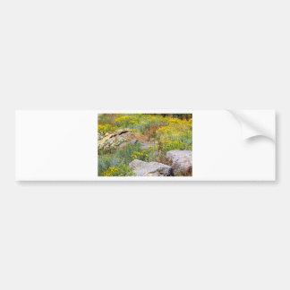 Wild Woodland Bumper Sticker