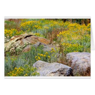 Wild Woodland Card