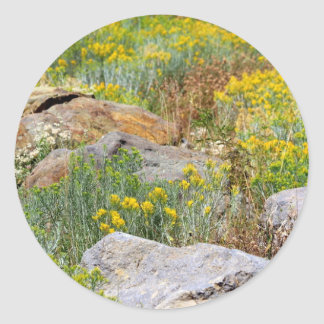 Wild Woodland Classic Round Sticker