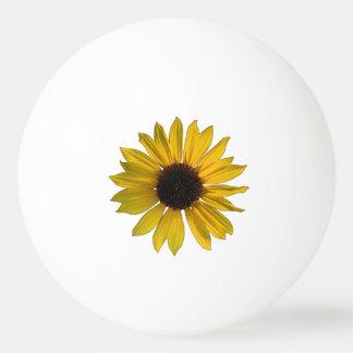 Wild Yellow Sunflower