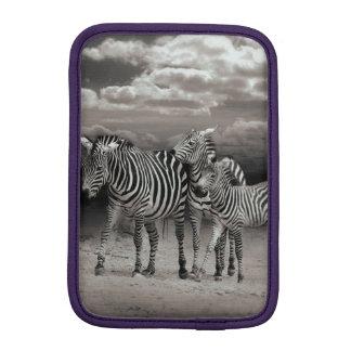 Wild Zebra Socialising in Africa iPad Mini Sleeve