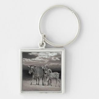 Wild Zebra Socialising in Africa Silver-Colored Square Key Ring