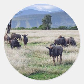 Wildebeest herd classic round sticker