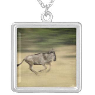 Wildebeest in motion, Connochaetes taurinus, Square Pendant Necklace