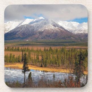 Wilderness Forest Mountains Coaster