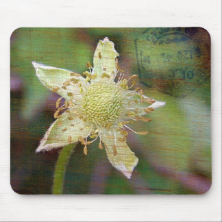 Wildflower 4 mouse pads