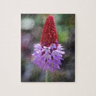 wildflower bloom puzzle