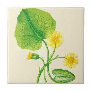 Wildflower Ceramic Kitchen Tile Coltsfoot