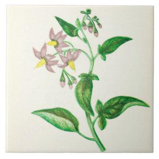 Wildflower Country Kitchen Ceramic Tile Nightshade