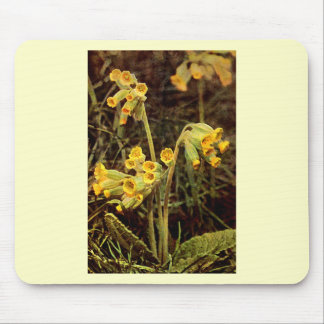 Wildflower: Cowslip Mouse Pad