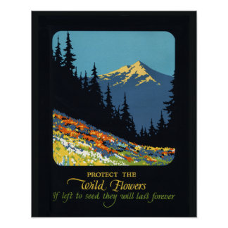 Wildflower earth day environmental deco poster