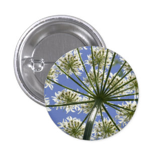 Wildflower Hogsweed Flower Button / Badge