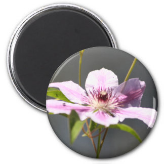 Wildflower magnet