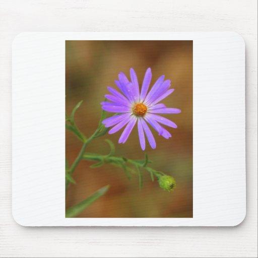 Wildflower Mousepads