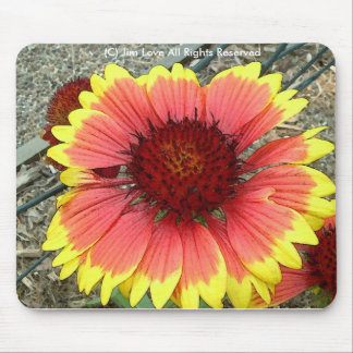 Wildflower Mouse Pad