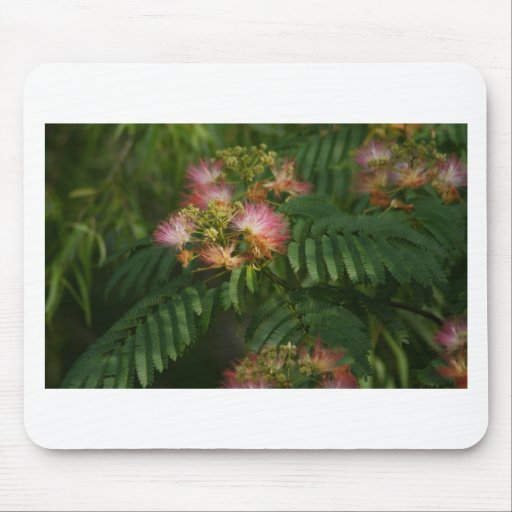 Wildflower V Mouse Pads