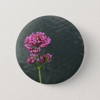 Wildflowers against the water surface of a river 6 cm round badge
