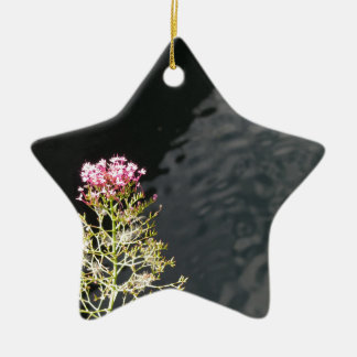 Wildflowers against the water surface of a river ceramic star decoration