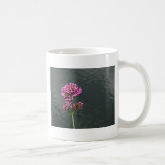 Wildflowers against the water surface of a river coffee mug