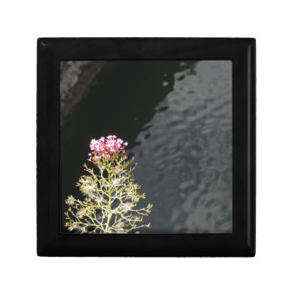 Wildflowers against the water surface of a river gift box