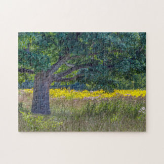Wildflowers & An Old Tree Puzzle By Tom Minutolo