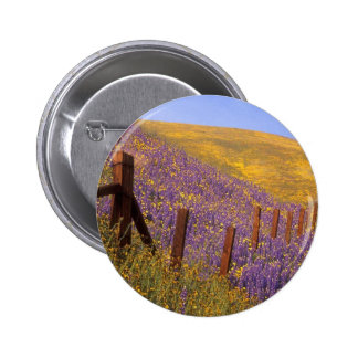 Wildflowers And Fence Post Pinback Button