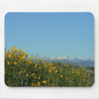 Wildflowers and Mountains Mousepad