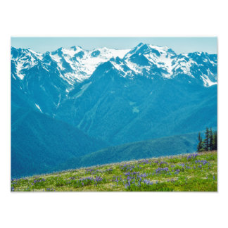 Wildflowers and Mountains Photo Print