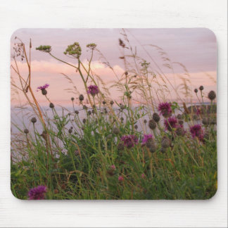 Wildflowers at Dusk Mousemats