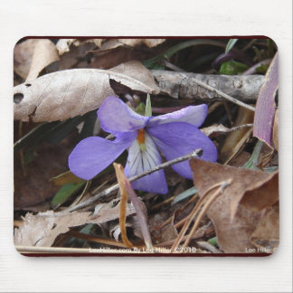 WildFlowers Birds-Foot Violet Hot Springs AR Gifts Mouse Pad