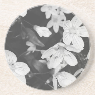 Wildflowers Black and White Drink Coaster