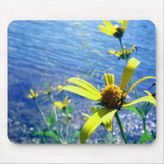 Wildflowers by the Lake Mousepad