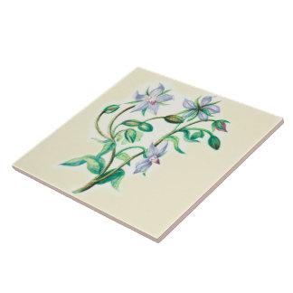 Wildflowers Country Kitchen Ceramic Tile Borage