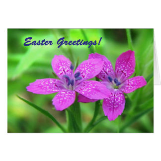 Wildflowers Easter Greeting Card