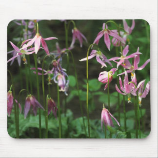 Wildflowers - Fawn Lilies Mouse Pads