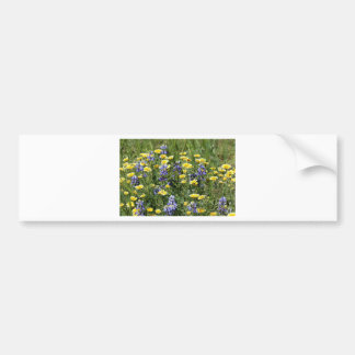 Wildflowers in Purple and Yellow Bumper Sticker