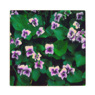 Wildflowers in the forest wood coaster