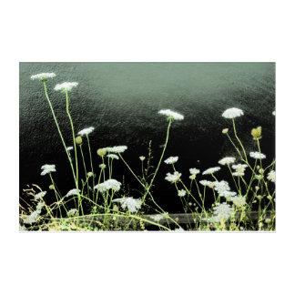 Wildflowers in white acrylic wall art