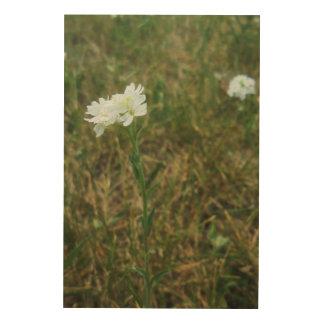 Wildflowers in white wood prints