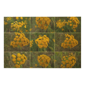 Wildflowers in yellow wood canvases