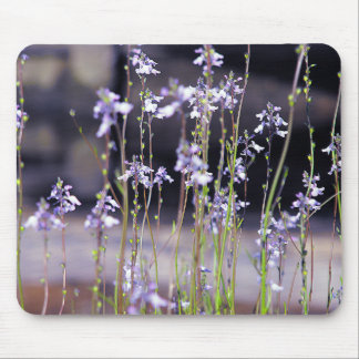 Wildflowers Mousepads